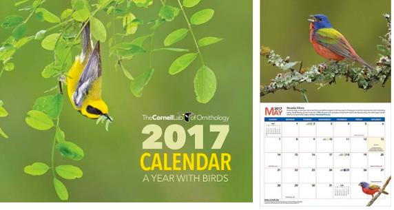 Birds 2017 Calendar