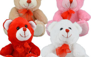 DollarTree.com Valentine's Day Ideas & Decorations