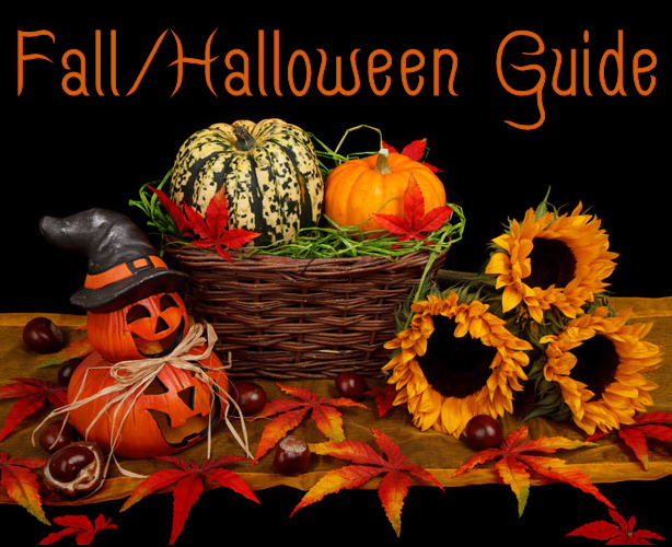 2017 Fall/Halloween Guide ~Recipes, Treats, Decorating, Party Ideas & More.