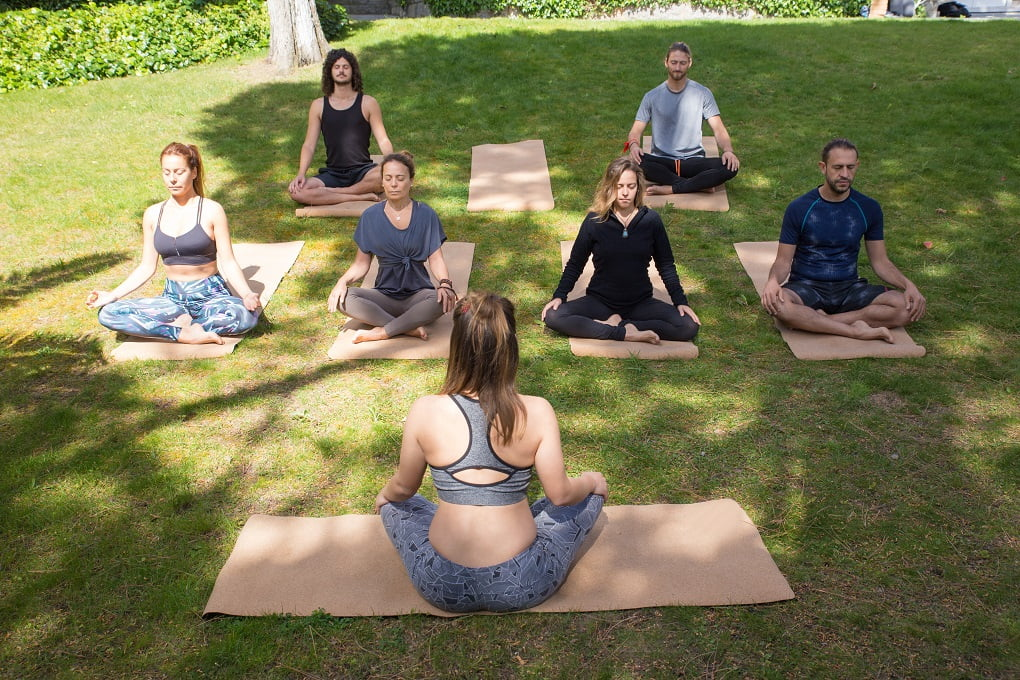 Zen Hobbies